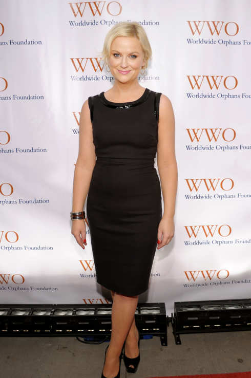 NEW YORK, NY - NOVEMBER 14:  Actress Amy Poehler attends the Worldwide Orphans Foundation's Seventh Annual Benefit Gala hosted by Amy Poehler and Will Arnett held at Cipriani Wall Street on November 14, 2011 in New York City.  (Photo by Michael Loccisano/Getty Images for Worldwide Orphans Foundation)