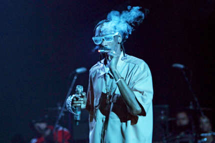 LOS ANGELES, CA - DECEMBER 13:  Snoop Dogg performs in concert at The Wiltern on December 13, 2011 in Los Angeles, California.  (Photo by Jonathan Leibson/FilmMagic)