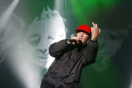 "Fred Durst, singer of the US band Limp Bizkit performs on stage at the music festival ""Rock im Park"" (Rock in the Park) in the southern German city of Nuremberg on June 5, 2009 . The annual festival is scheduled from June 5 to June 7.   AFP PHOTO    DDP / TIMM SCHAMBERGER  GERMANY OUT (Photo credit should read TIMM SCHAMBERGER/AFP/Getty Images)"