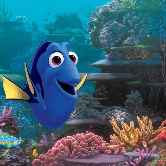 (Pictured) DORY.